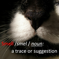 smell Speaking